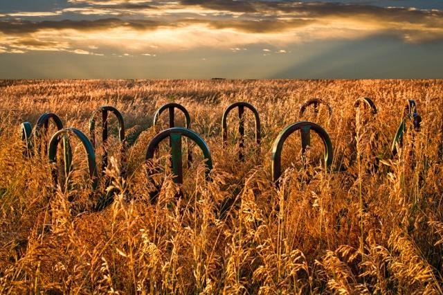 Prairie Art