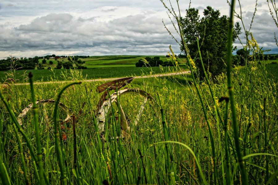 Standing By - Loess Hills