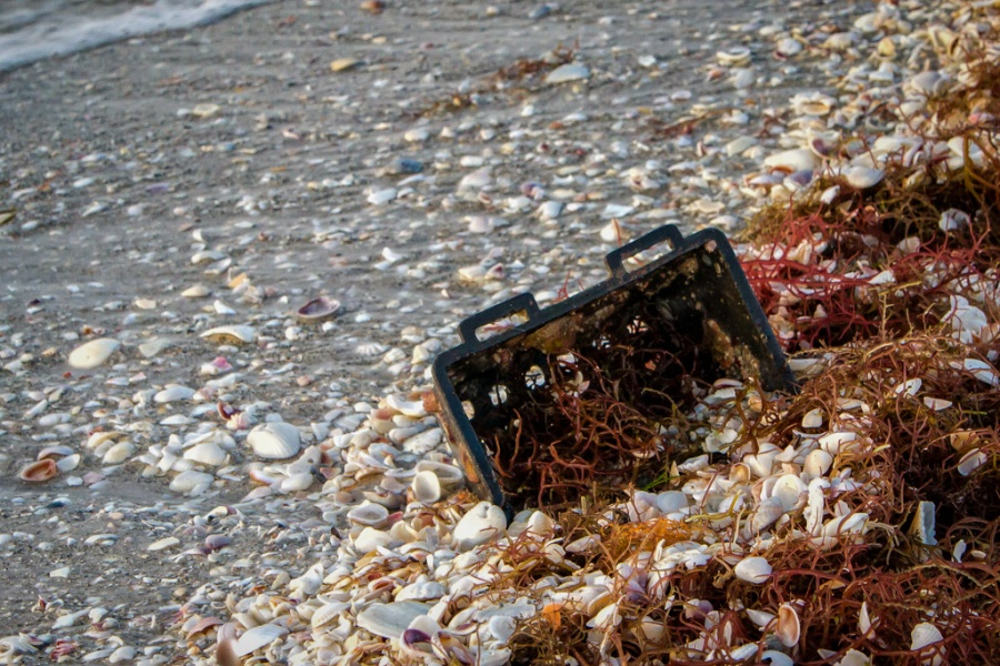 Seaside Deposits
