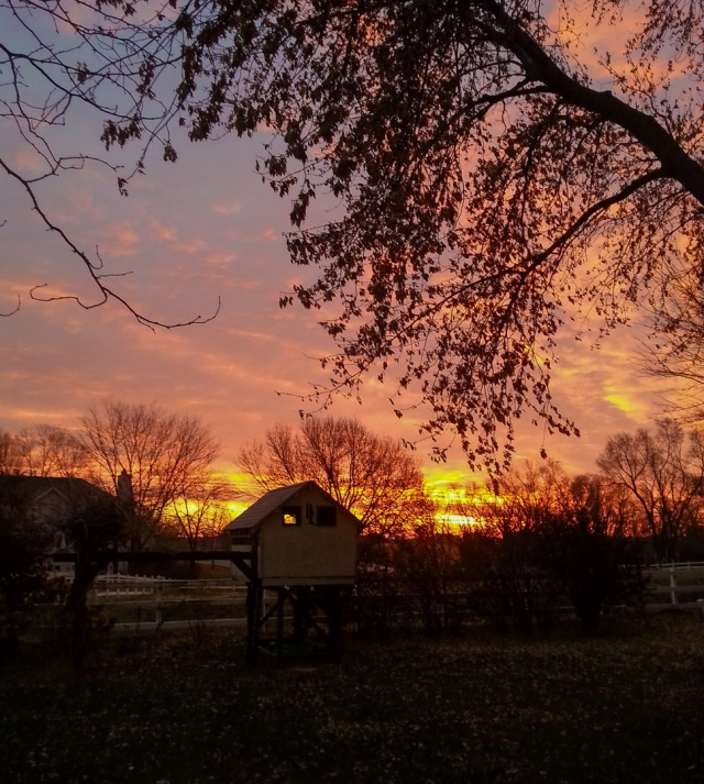 backyard sunrise - taken by VAH