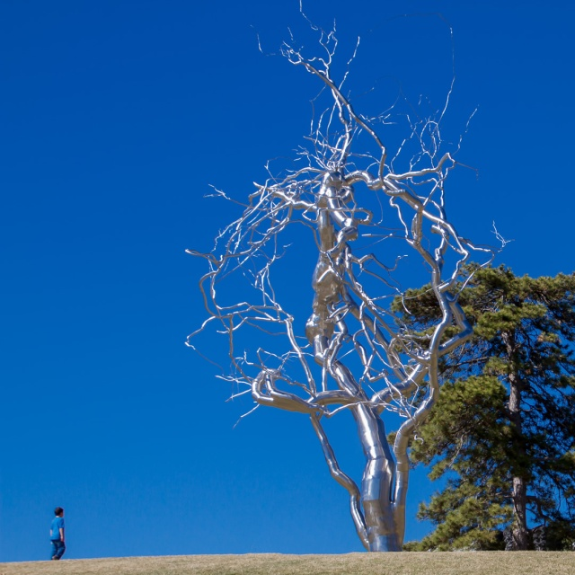 Stainless Steel Tree